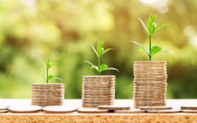 Bio, per le vendite al dettaglio il giro d'affari supera i 37 miliardi